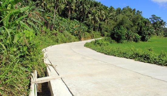 Sta. Margarita, Samar farm to market road