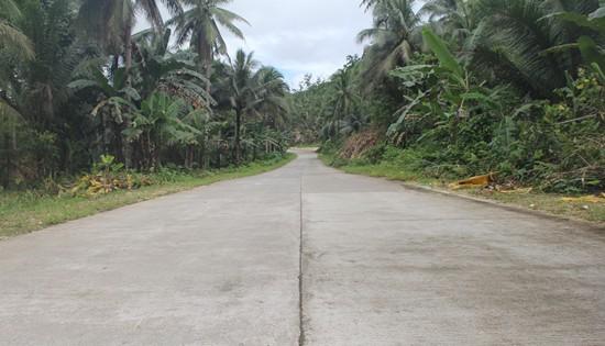 Gandara-Matuguinao Road portion