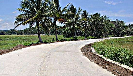 Carayman-Naga-Cogon road