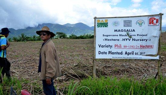 Magsasaka ng Libongao Farmers Association (MAGSALIA)