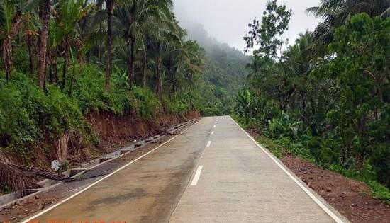 Biliran access road