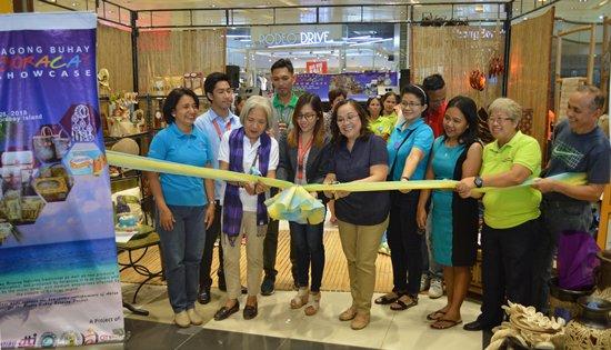 Boracay opening fair