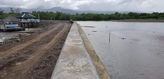 leyte flood-control project