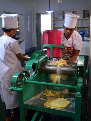 noodle processing