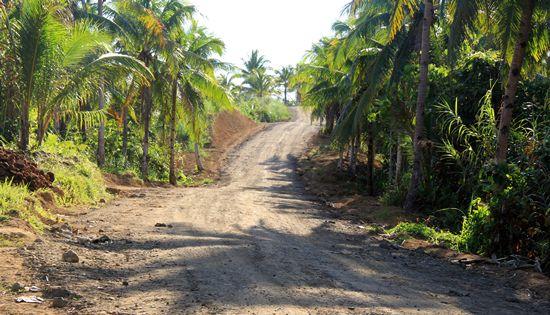 Hindang to Cagbanyacao road