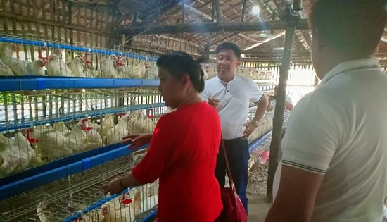 Tanauan poultry business