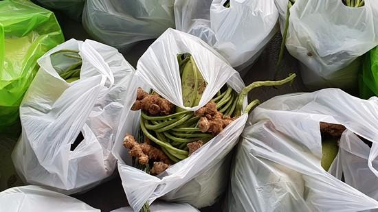 Calbiga COVID-19 food supplies