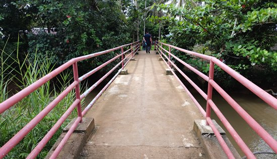 Caibiran footbridge